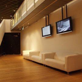 Convenient Pas De Deux (met Ineke Sleeuwenhoek), gebouw Nationale Toneel, Den Haag 2007